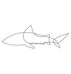 Shark one line fish design silhouette logo vector