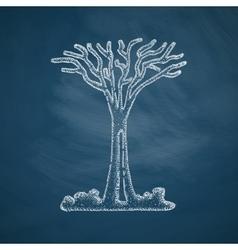Singapore tree icon vector