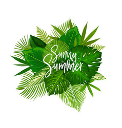 Sunny summer tropical palm leaf poster vector