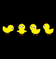 chicken chick bird set line cute cartoon funny vector image