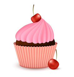 chocolate cupcake with cherry vector image