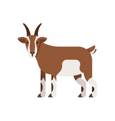 flat style of goat vector image