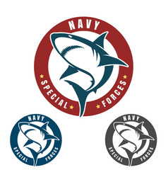navy special forces emblem vector image