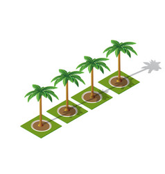 set of isometric 3d palm vector image