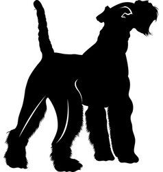 silhouette dog breed fox terrier vector image