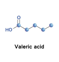Valeric acid or pentanoic acid vector