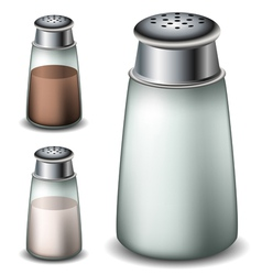 Salt and pepper shakers vector image vector image