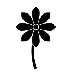 Gerbera flower spring ornament pictogram vector