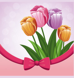 Beauty tulips flower ribbon bow decorate vector