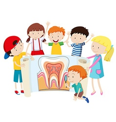 Children with tooth diagram vector image