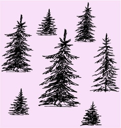 Christmas trees pine trees vector
