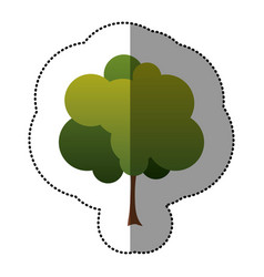 Color stamp beautiful tree icon vector