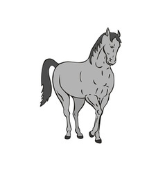 Horse Standing Retro vector