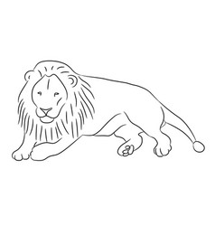 Lying lion from the contour black lines on white vector
