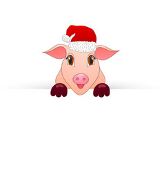piggy new year symbol looks out of paper vector image