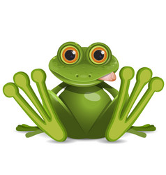 stock fat frog vector image