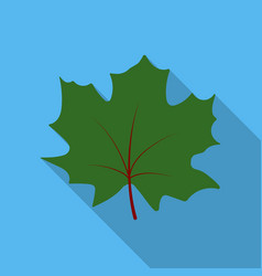 maple leaf icon in flat style for web vector image