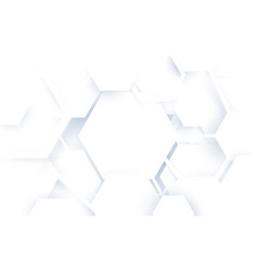 abstract white hexagons geometric shape background vector image