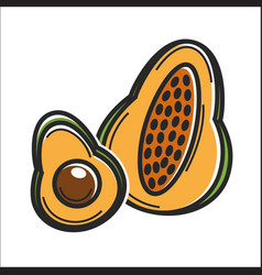 Avocado fruit cuba travel popular destination and vector