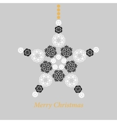 Christmas star made from snowflakes vector image