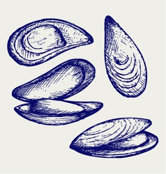 Cooked lipped mussel vector image
