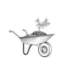 garden cart with plant wheelbarrow with humus vector image