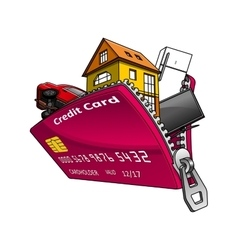 Goods inside credit card with zipper vector