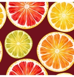 Citrus slices seamless vector image vector image