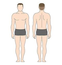 figure man vector image