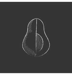 Avocado drawn in chalk icon vector