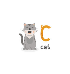 alphabet letter c and cat vector image