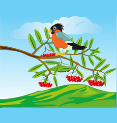 Bird on branch rowanberry and mountains on back vector