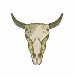 Cow skull design template vector