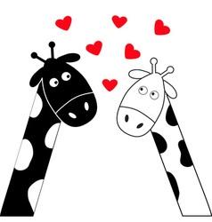 Cute cartoon black white giraffe boy and girl vector image