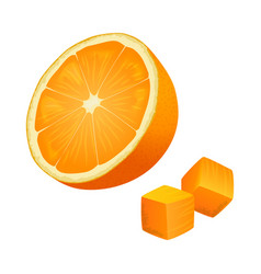 half of orange with two cubes isolated vector image