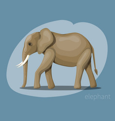 image of an african elephant vector image