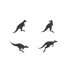 Kangaroo logo icon vector