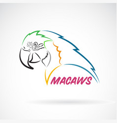 Macaws parrot on white background bird icon wild vector