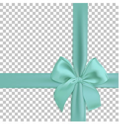 realistic turquoise bow and ribbon isolated on vector image