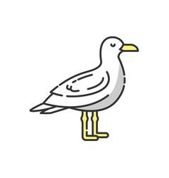 seagull rgb color icon vector image