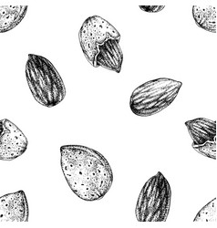 seamless pattern with hand drawn almonds vector image