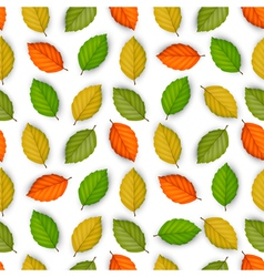 seamless pattern with colored leaves vector image vector image