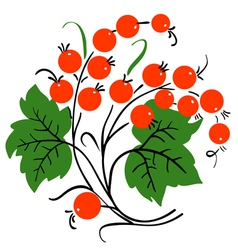 bunch of red currant ripe berry vector image vector image