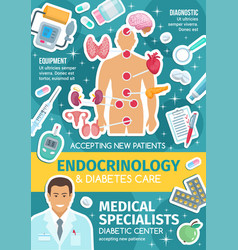 Endocrinology medical poster with endocrine system vector
