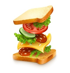 Exploded view sandwich vector