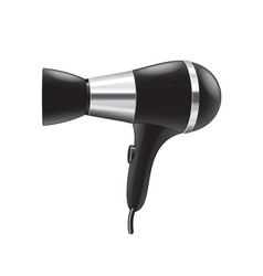 Hair dryer isolated vector