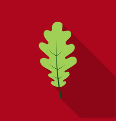 oak leaf icon in flat style for web vector image