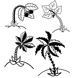 Palm trees collection vector image