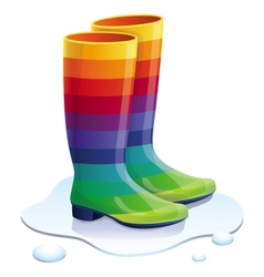 rubbers boots in rainbow colors vector image