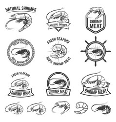 Set shrimps meat labels isolated on white vector